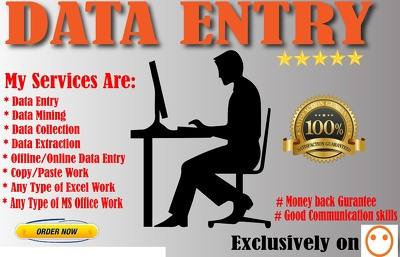 Do High quality data entry work for 1 hour with 100% accuracy