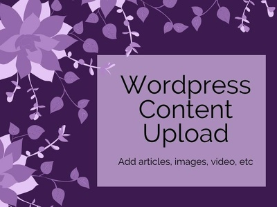 Upload your content on Wordpress (30 articles)