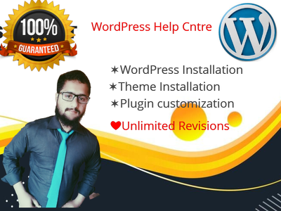 Install themeforest wordpress and customize it