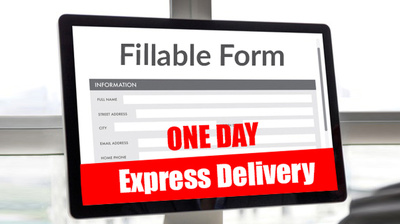 Fillable PDF form and design professionally up to 10 pages