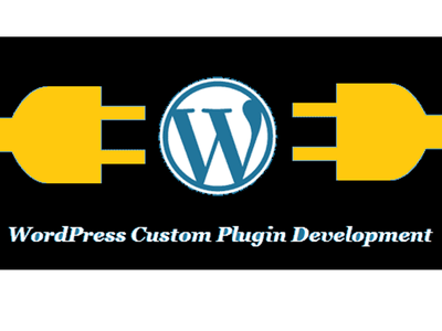 develop a custom wordpress plugin
