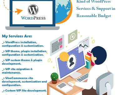 Configure WordPress with themes & plugins