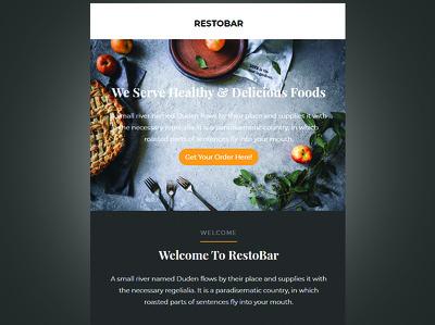 Design Responsive MailChimp Email Template Newsletter