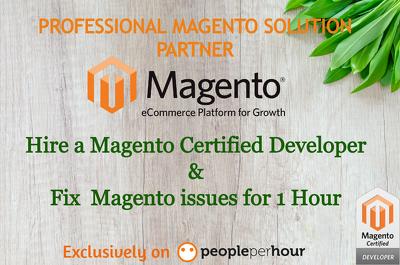 1 hour of fixes/edits/customization of Magento website