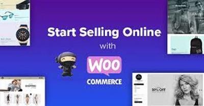 Make ECommerce website in Wordpress