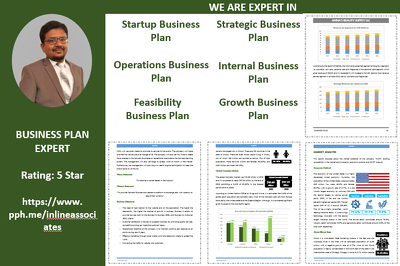 Write investor ready Business Plan