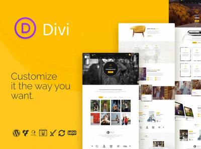 I can customize WP Divi theme