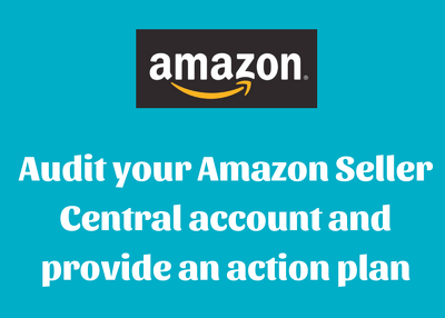 Audit your Amazon Seller account & provide recommendations