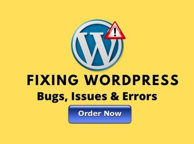 Fix and debug wordpress error professionally