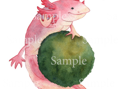 Draw watercolor portrait of your pet