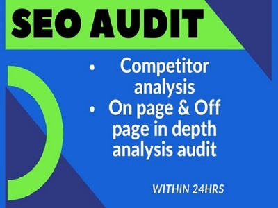 Provide professional SEO audit and competitive analysis