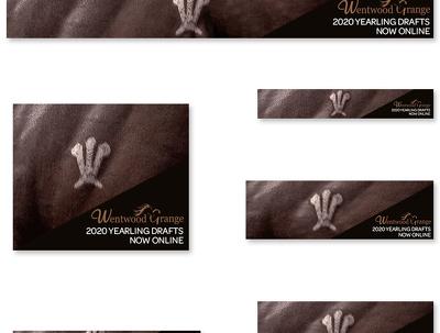 Design high converting animated GIF banner ads-1 banner