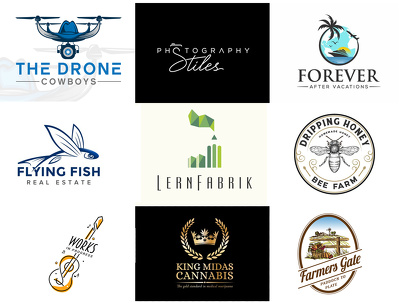 Premium and Professional LOGO + Unlimited Revisions + Vector