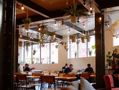Build a mind blowing Restaurant WordPress Website Responsive