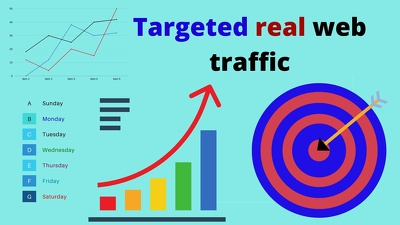 Deliver 10000  real usa web traffic