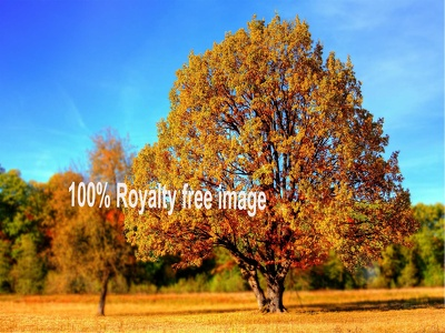Provide 50 inspirational HD royalty free image