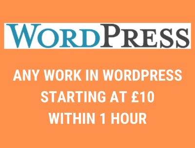 Do Anything in WordPress and Woocommerce Within One Hour