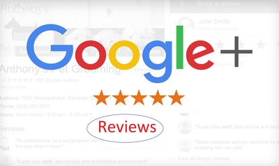 manually Post 15 SEO Friendly Reviews on your google page