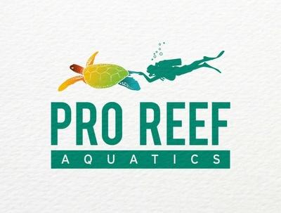 Design perfect & beautiful Logo