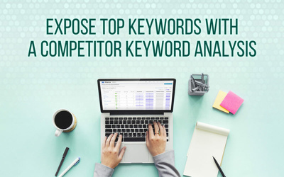Provide Competitor Analysis - Keyword Research & Backlink Report