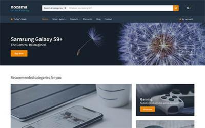 Design responsive Wordpress/elementor pro website