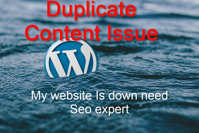 Check the duplicate content issue on your website
