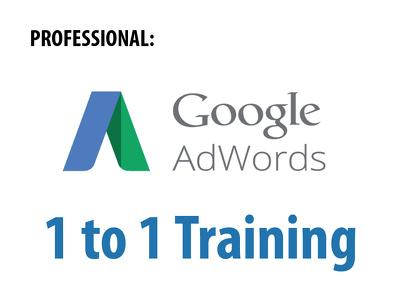 Provide 1 Hour Expert Google Ads Training