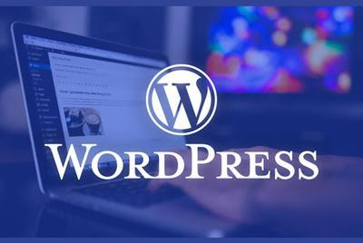 Create Wordpress website by using any theme