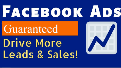 Setup and manage high ROI Facebook ads, business manager account