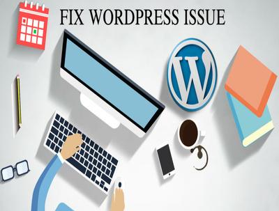 Fix the bug / error in Wordpress / Wix / Magento / Responisve