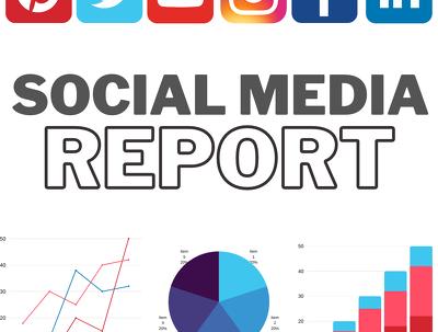 Provide full audit of your social media channels