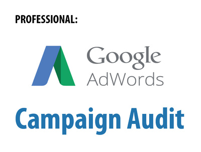 Audit your Google AdWords PPC account & give expert advice