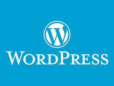Provide 1 hour of fixes/customization in your WordPress website