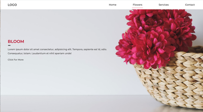 Design 1 page website