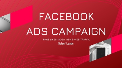 Facebook or google ads setup and ongoing management
