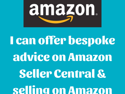 Provide bespoke advice about selling on Amazon, for 1 hour
