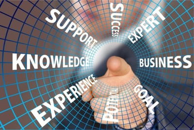 Provide the services of a highly experienced consultant, advisor
