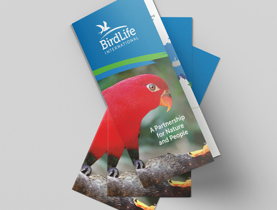 Create your leaflet