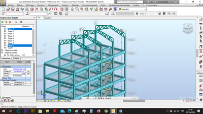 I will design and model your building in RSA Robot Structural