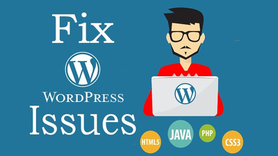 Fix your wordpress Issues, Bugs, and Problems in one Hour
