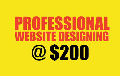 Design a Professional website.