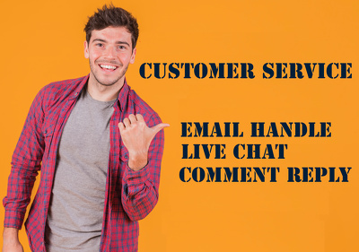 Online Customer Support for 4 hours