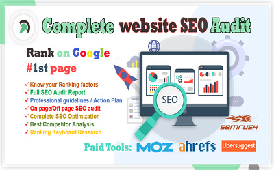 Provide website SEO audit, competitor analysis, action plan