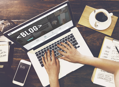 Write SEO optimized article and blog post in 24 hours