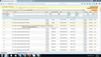 Manually add 100 products to your Magento store