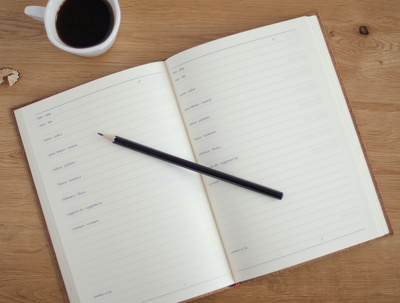 Write a critical review of your book