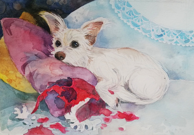 Make a christmas  illustration of your pet.
