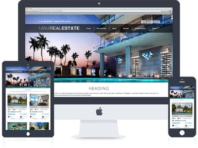Create WordPress real estate website or others as per needs.