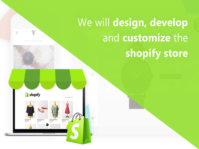 Develop a professional drop shipping shopify store
