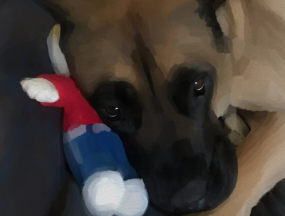 Do a portrait of your pet from your photograph